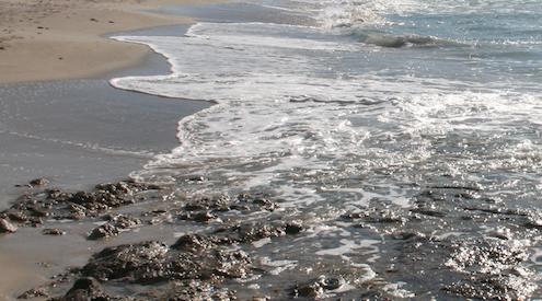sea recording